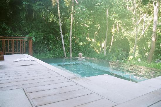 Four Seasons Resort Bali at Sayan: Plunge pool 101