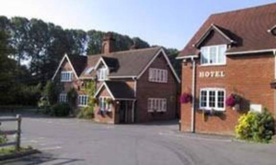 New Forest Lodge: The Best Lodge Ever
