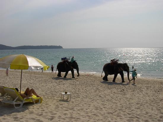 Allamanda Laguna Phuket: Big things on Bang Tao beach