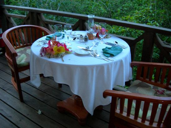 Hamanasi Adventure and Dive Resort: private dinner on our treehouse patio