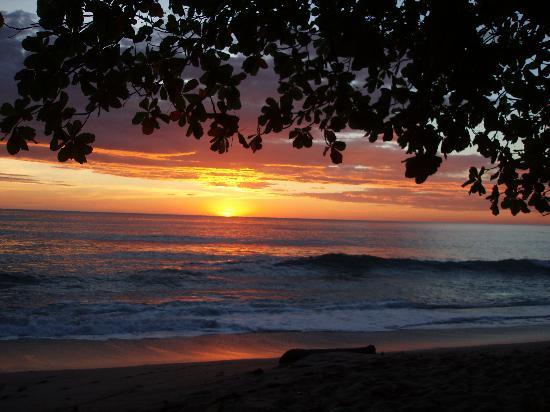 Milarepa: Sunset