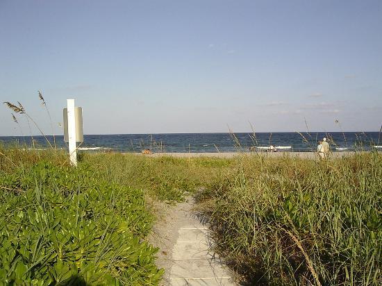Delray South Shore Club: South Shore Club - Blick vom Pool auf das Meer hinter kleinen Dünen