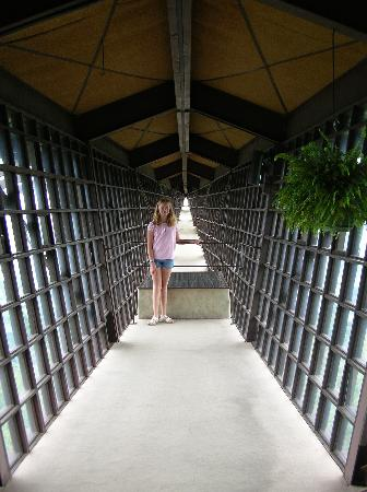 House On The Rock Infinity Room Wisconsin