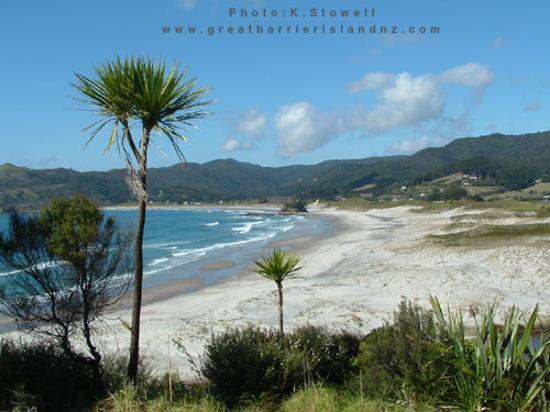 Great Barrier Island Medlands Beach