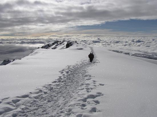 Kilimanjaro National Park, Tanzania: Footstesp to the summit - Mt Kilimanjaro