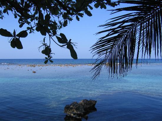 Port Antonio, Jamaica: foto artistica...