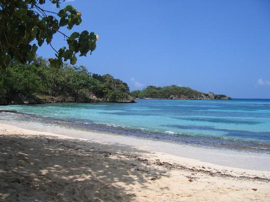 Port Antonio, Jamaica: winifred