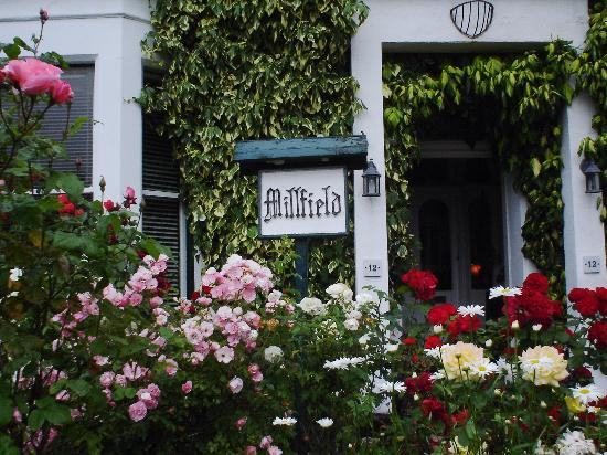 Millfield Guest House Photo