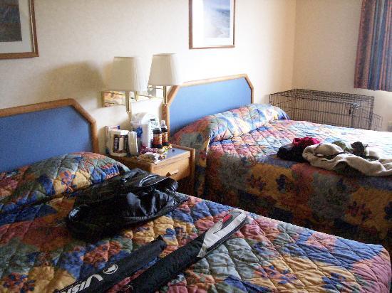 Best Western Astoria Bayfront Hotel: exta comfy beds wait our heads