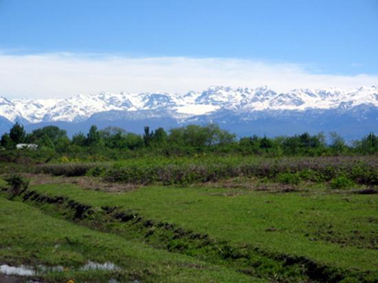 Gruzja: Caucasus