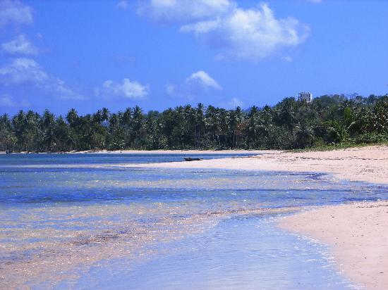 Péninsule de Samaná, République dominicaine : Beach at Gran Bahia El Portillo