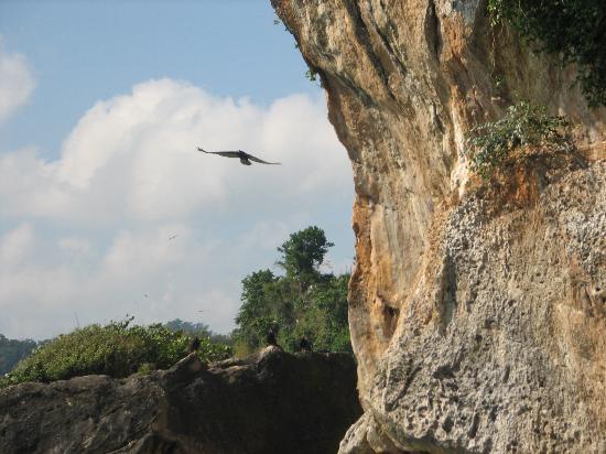 Péninsule de Samaná, République dominicaine : View during excursion to National Park in Samana