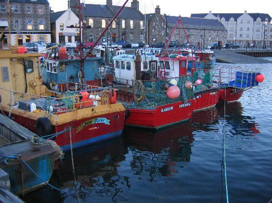 Orkady, UK: Kirkwall Harbor, 2004
