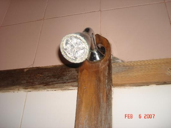 Estancia Santa Rita: Calcified, corroded showerhead