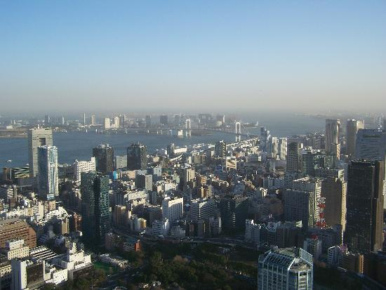 The harbor from Tokyo Tower