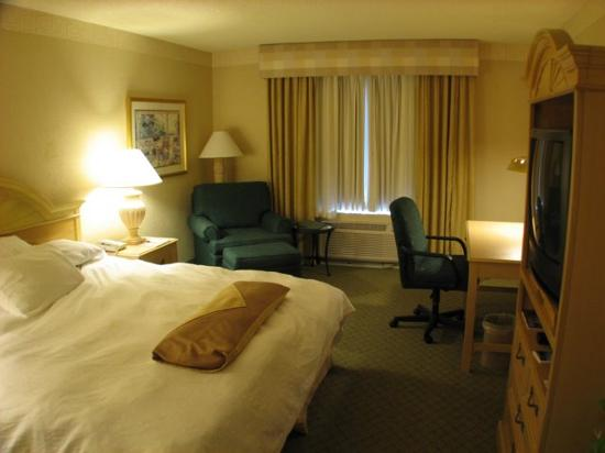 Hilton Garden Inn Atlanta North/Johns Creek: Armchair and Work Desk