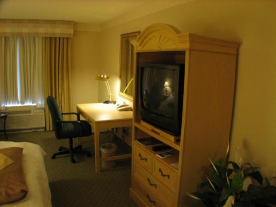 Hilton Garden Inn Atlanta North/Johns Creek: TV and Work Desk