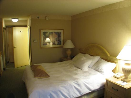 Hilton Garden Inn Atlanta North/Johns Creek: King Size Bed