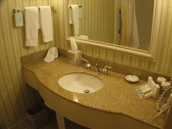Hilton Garden Inn Atlanta North / Johns Creek: Marble Sink Vanity