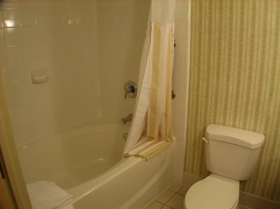 Hilton Garden Inn Atlanta North / Johns Creek: Large Bathtub