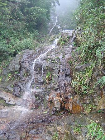 Bach Ma National Park: Waterfall along the road