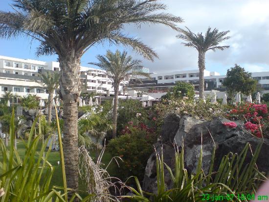 Hotel Costa Calero: Exemplory gardens