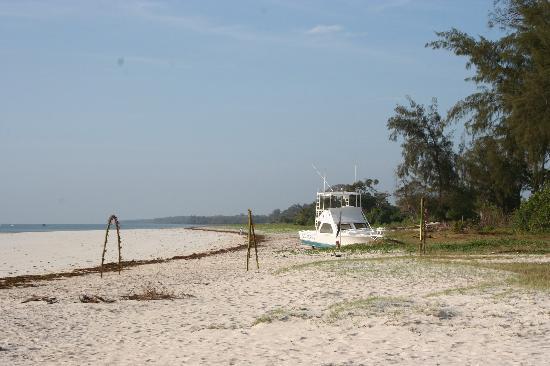 Pinewood Beach Resort & Spa Foto