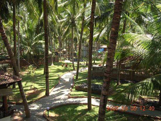 Kadaltheeram Ayurvedic Beach Resort: Hotel grounds
