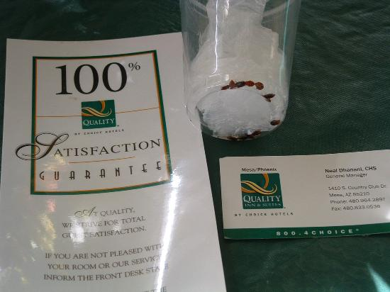 American Inn & Suites Mesa: Bugs in the Room - Satisfaction - Hah!