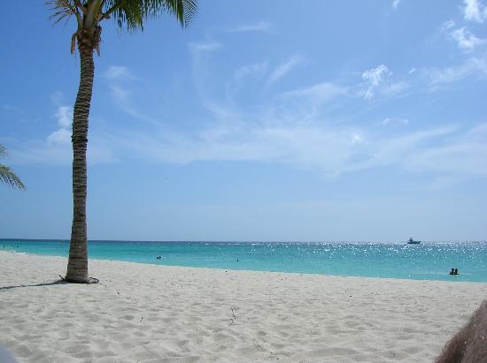 Bucuti & Tara Beach Resort Aruba: Out on the Beach
