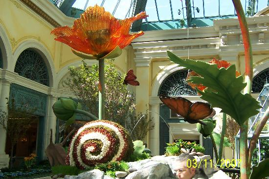Conservatory & Botanical Gardens at Bellagio