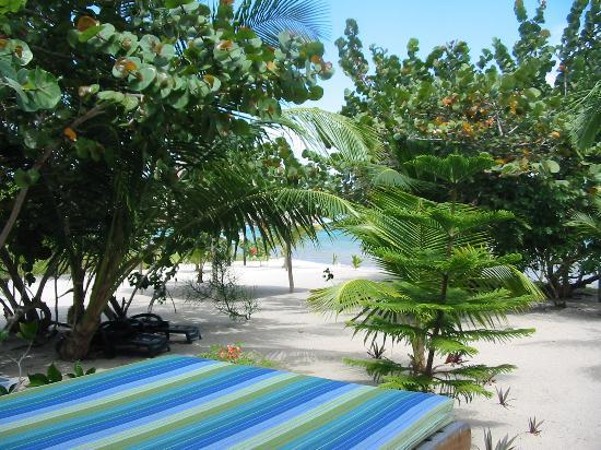 Colibri Beach Villa: Front porch view