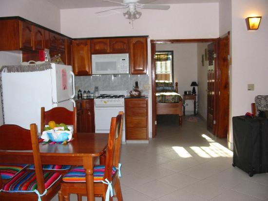 Colibri Beach Villa: the apartment