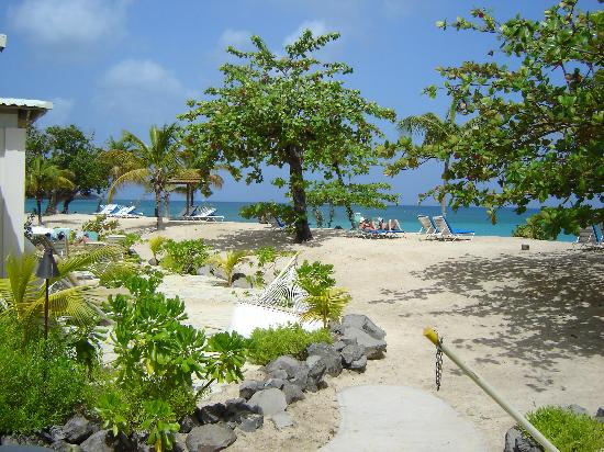 Spice Island Beach Resort: View of the beach from our patio