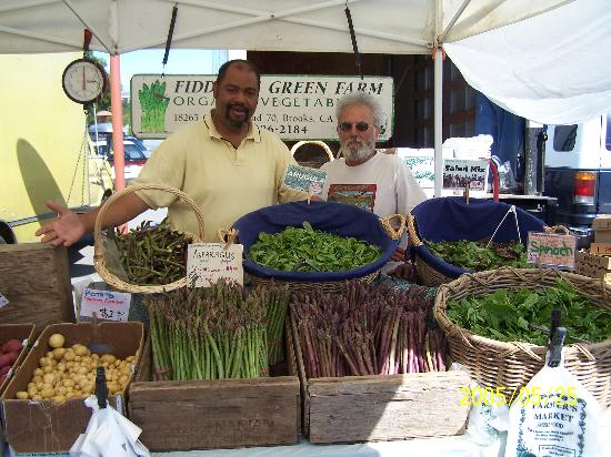 Marin County Farmers' Market--San Rafael Photo