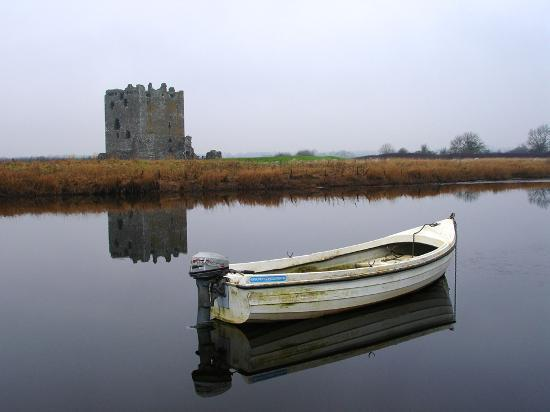 Дамфрис, UK: Threave Castle