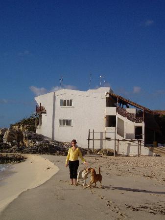 Ventanas al Mar: beach walk with resident doggie escorts