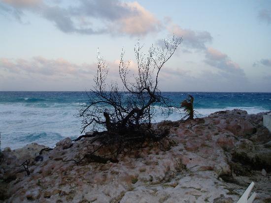 Ventanas al Mar: View from our porch