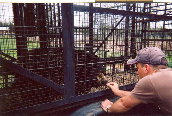 Exotic Resort Zoo Photo