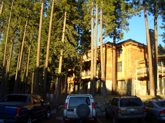 Hyatt High Sierra Lodge: some of the buildings