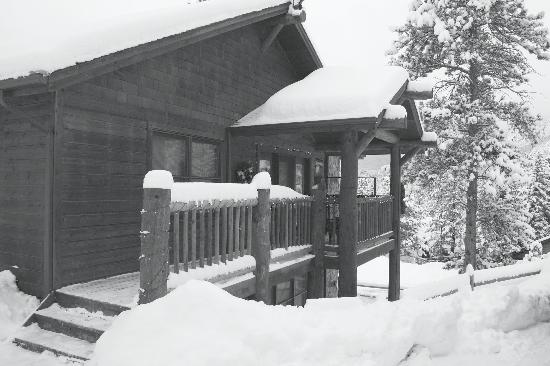 Black Canyon Inn: The cabin