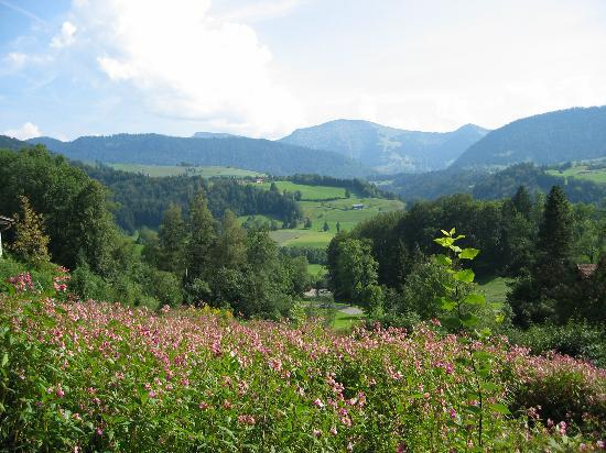 walk in Oberstaufen