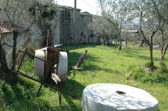 Italy Farm Stay: A local view