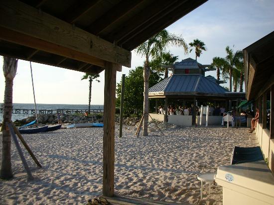 tiki bar picture of the inn at little harbor ruskin. Black Bedroom Furniture Sets. Home Design Ideas