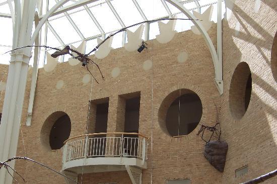 Fernbank Museum of Natural History: The center dinosaur court.
