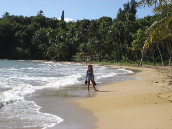 Hotel Lucia Beach Villas Picture