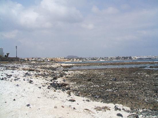 Oasis Royal: The beach