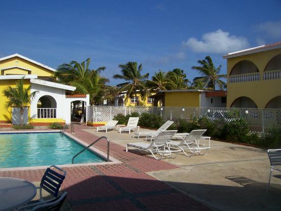 Coconut Inn : Pool area