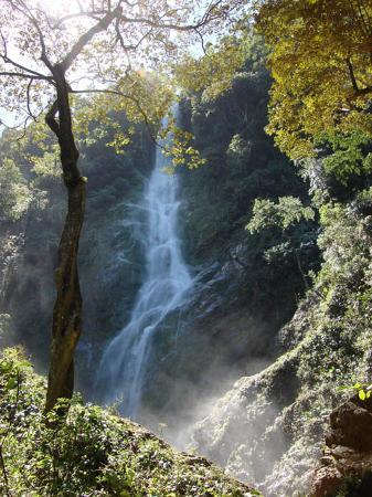 Jungle River Lodge: Pico Bonito Falls