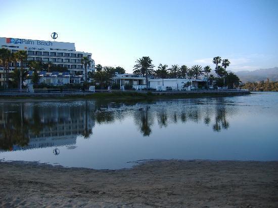Maspalomas, Spain: atardecer en la charca